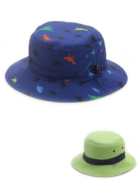 hat2_3