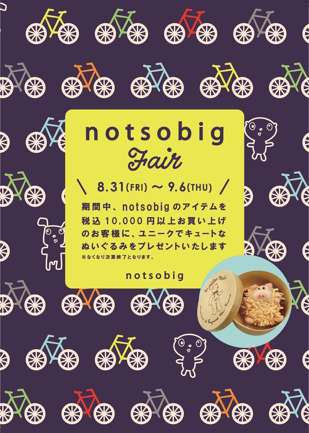notsobig_design_pop_okol(早川調整)
